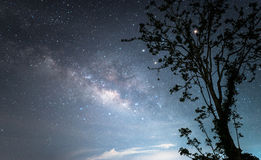 La galaxia de la vía láctea sobre el cielo nocturno estrellado Fotos de archivo