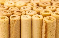 La galleta rueda el fondo Imagen de archivo libre de regalías