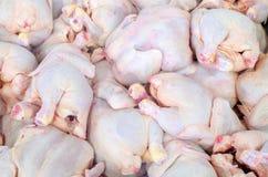 La gallina è sulla tavola del ` s del macellaio Laboratorio di sezionamento del pollo fotografia stock