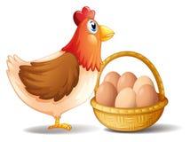 La gallina de la madre y una cesta de huevos Foto de archivo libre de regalías