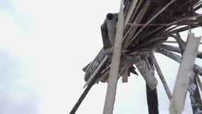La garra de la grúa del cargador del camión levanta para arriba la basura de madera de la madera de construcción almacen de video