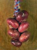 La gavilla de cebollas rojas Imagenes de archivo