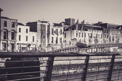 La gaviota guarda la ciudad fotos de archivo libres de regalías