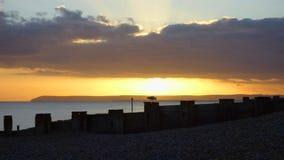 La gaviota se encarama en un rompeolas como las puestas del sol fotografía de archivo