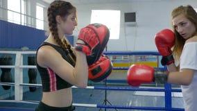 La gente activa, muchacha toma soplos en las patas del boxeo del atleta de sexo femenino fuerte en el anillo en gimnasio almacen de video
