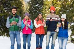 La gente agrupa usando el teléfono elegante que charla el invierno al aire libre que camina de Forest Happy Smiling Young Friends Fotografía de archivo