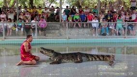 La gente al coccodrillo estremo mostra a Pattaya, Tailandia archivi video