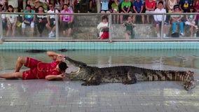 La gente al coccodrillo estremo mostra a Pattaya, Tailandia stock footage