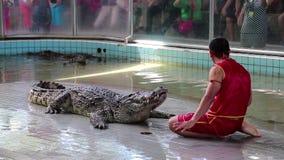 La gente al coccodrillo estremo mostra a Pattaya, Tailandia video d archivio
