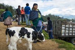 La gente al mercato del bestiame della città di Otavalo nell'Ecuador Fotografie Stock Libere da Diritti