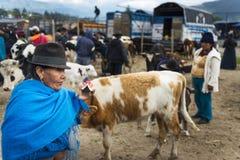 La gente al mercato del bestiame della città di Otavalo nell'Ecuador Immagine Stock