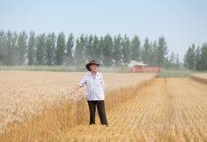 La gente al raccolto Immagini Stock