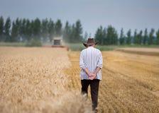 La gente al raccolto Immagine Stock Libera da Diritti