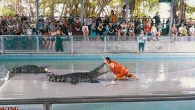 La gente alla manifestazione estrema del coccodrillo Azienda agricola famosa del coccodrillo di Pattaya thailand l'asia stock footage