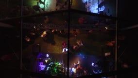 La gente baila en un banquete delante de la etapa en el aire abierto almacen de video