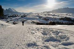 La gente camina en las cuestas del esquí cubiertas con nieve Fotografía de archivo