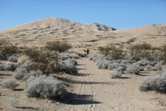 La gente cammina sulla sabbia del deserto del Mojave Fotografia Stock