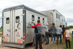 La gente carica i cavalli nel furgone per trasporto Immagine Stock