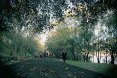 La gente che cammina fra gli alberi Immagine Stock Libera da Diritti