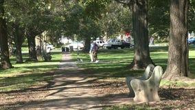La gente che cammina il loro cane nel parco con traffico fuori nella distanza archivi video