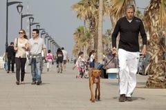 La gente che cammina lungo il lungonmare, Beirut Fotografia Stock