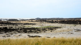 La gente che cammina nel paesaggio di bassa marea di Iles de Chausey Fotografia Stock