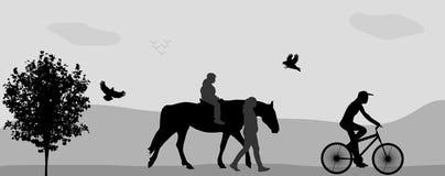 La gente che cammina nel parco su un cavallo e su una bicicletta Fotografie Stock