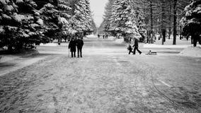 La gente che cammina in un parco all'inverno Immagini Stock