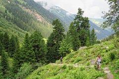 La gente che fa un'escursione attraverso il paesaggio alpino di Gerlostal come parte Fotografia Stock