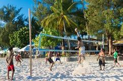 La gente che gioca beach volley Immagine Stock Libera da Diritti