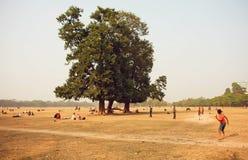 La gente che gioca il cricket e che ha picnic in città parcheggia in Calcutta Fotografie Stock Libere da Diritti