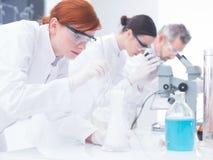 La gente che lavora nel laboratorio di chimica Fotografia Stock Libera da Diritti