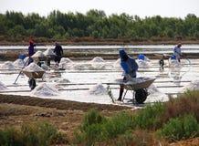 La gente che lavora in vaschetta del sale Fotografia Stock Libera da Diritti