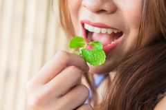 La gente che mangia le foglie di menta immagini stock