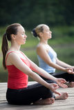 La gente che medita in natura Fotografie Stock