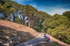 La gente che riposa a Wellington Botanic Garden, il più grande parco pubblico in città Fotografia Stock Libera da Diritti