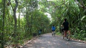 La gente che si esercita guidando le biciclette sulla pista nella foresta verde fertile archivi video