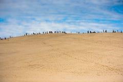 La gente che visita il più alta duna di sabbia in duna di Europa di Pyla Immagini Stock