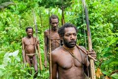La gente de Korowai del retrato del grupo en el fondo verde natural del bosque Foto de archivo