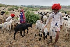 La gente del nomade in India Immagini Stock