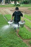 La gente del Vietnam, agricoltore vietnamita, viaggio Fotografia Stock Libera da Diritti