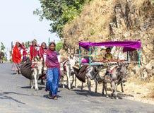 La gente del villaggio con gli asini che camminano su una via vicino a Pushkar, India Immagini Stock