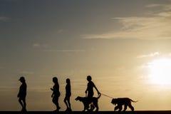 La gente della siluetta che cammina al tramonto Fotografie Stock