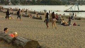 La gente della spiaggia che parla un passaggio di due ragazze archivi video