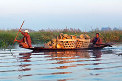 La gente della tribù di Intha, Myanmar Fotografia Stock Libera da Diritti