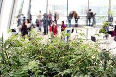 La gente dentro la via Skygarden di 20 Fenchurch Fotografia Stock Libera da Diritti