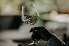 La gente di evento di festa che incoraggia con il champagne ed il vino Immagini Stock Libere da Diritti