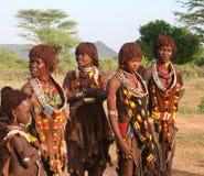 La gente di Hamer dell'Etiopia Fotografia Stock Libera da Diritti