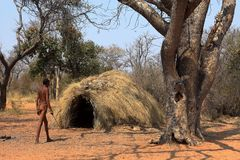La gente di San in Namibia immagini stock libere da diritti