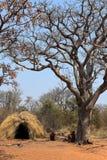 La gente di San in Namibia fotografie stock
